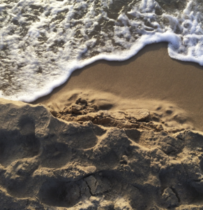 Plaża - Hel Apartamenty
